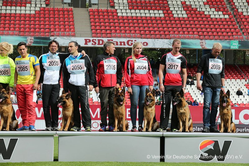 BSZS 2015 NUERBERG (Grundig Stadion)